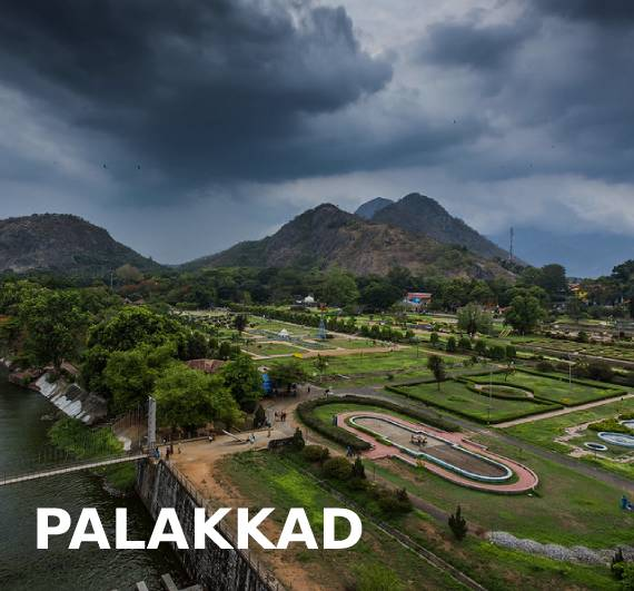 OMG Properties Palakkad